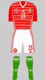 hungary euro 2020 1st kit